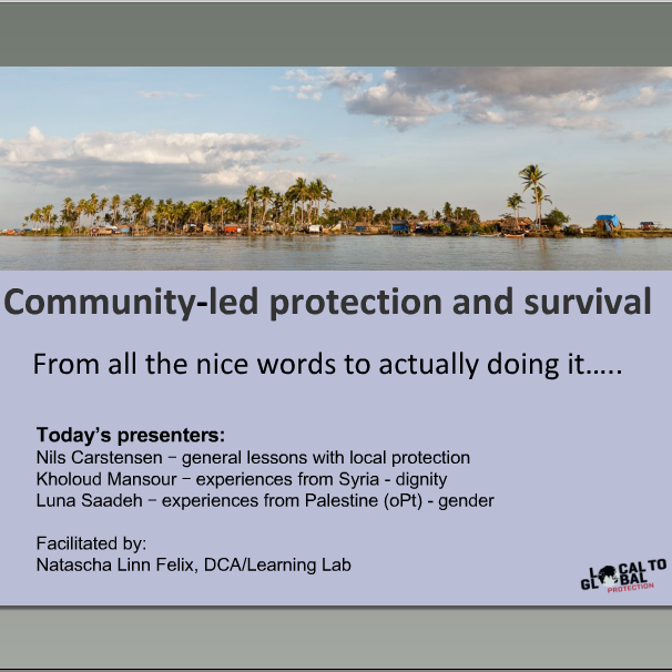 L2GP webinar on community-led protection I Image